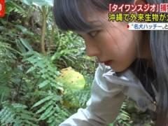 紀真耶アナの腰パンチラハプニングキャプ!テレビ朝日女子アナ