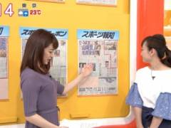新井恵理那のインナー透け透けのツンと上向きの美乳おっぱいの形がくっきりキャプ!フリーアナウンサー