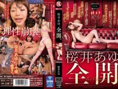 pornhub動画【桜井あゆ】限界まで禁欲させられた女優による性欲解放モードがこちら