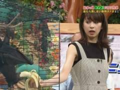 加藤綾子アナが志村どうぶつ園で逆バナナフェラ