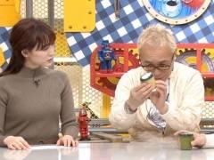 新井恵理那がニットセーターで美乳そうなエロおっぱいの形が浮き彫りキャプ!フリーアナウンサー