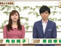 角谷暁子アナのムチムチの豊満おっぱいの形がくっきりの着衣巨乳キャプ!テレビ東京女子アナ
