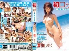 初ロケ 南の島でSEX三昧 夏川しずく Ami[4] EDGD-085