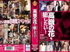 希崎ジェシカ「高嶺の花を犯したい! 厳選美女10人、8時間凌●スペシャル!」
