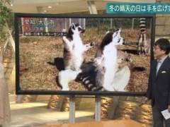 森川夕貴アナがピチピチニットで胸張ってムチムチの美乳そうなエロおっぱいの形が浮き彫りキャプ!テレビ朝日女子アナ