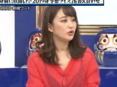 【女子アナエロ】TVで見せちゃったパンチラ・胸チラエロ画像集(52枚)
